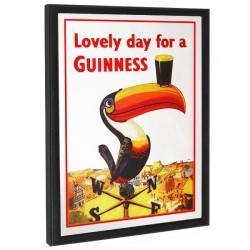 Καθρέπτης Guinness Toucan